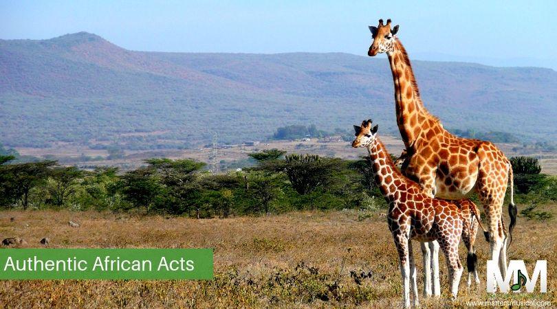 2 giraffes in Africa