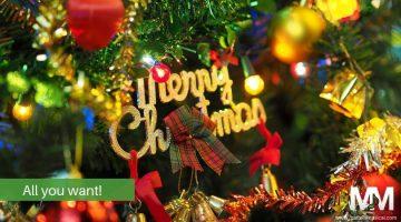 merry Christmas in treet